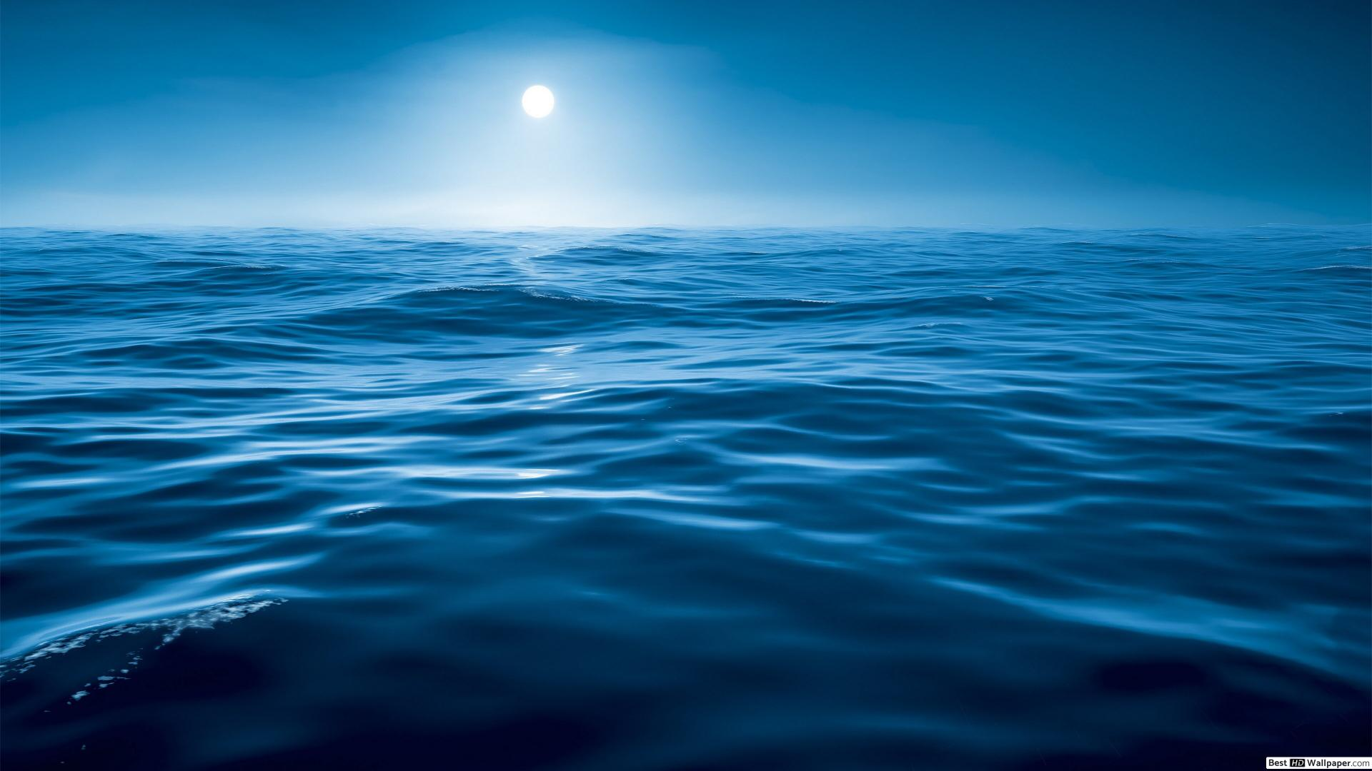 El mar profundo
